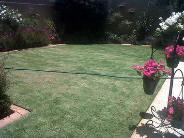 Subtropical Garden & Pool Services